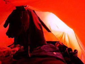 moj-antarktyczny-dom-i-tymczasowa-suszarnia_fot-m-wojtaczka